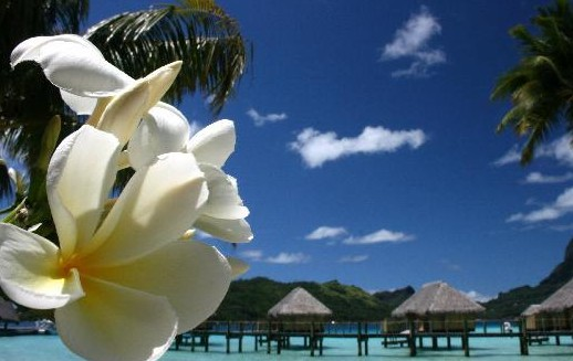 Bora Bora - Pearl Beach Resort & Spa